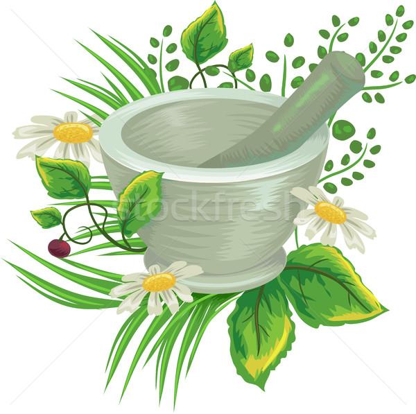 Сток-фото: травы · иллюстрация · медицинской · зеленый · медицина · растений