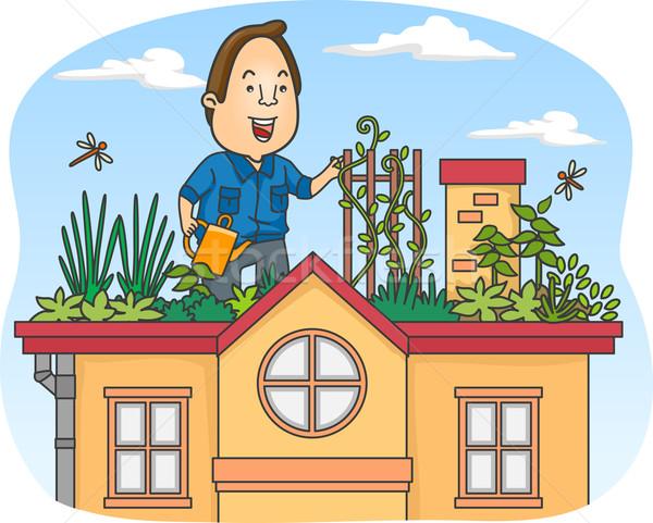 屋上 庭園 実例 男 緑 農業 ストックフォト © lenm