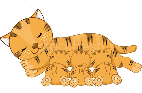 Amamentação gato ilustração gatinhos leite animal Foto stock © lenm