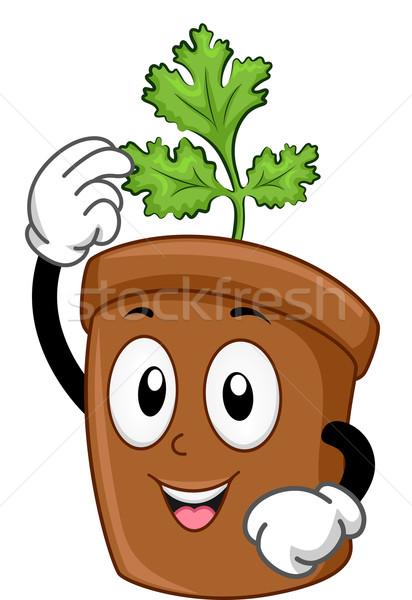 Coriandolo mascotte illustrazione verde agricoltura pot Foto d'archivio © lenm