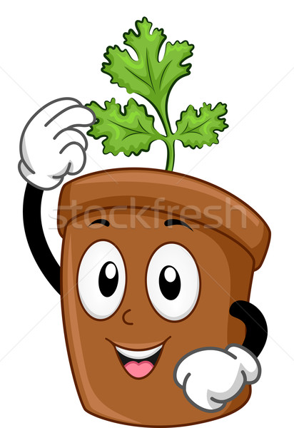 Coriandre mascotte illustration vert agriculture pot Photo stock © lenm