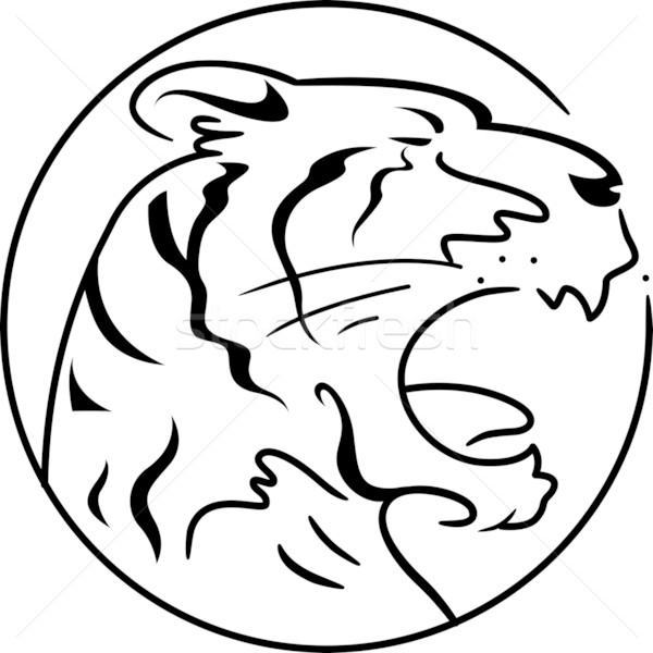 Stock photo: Year of the Tiger