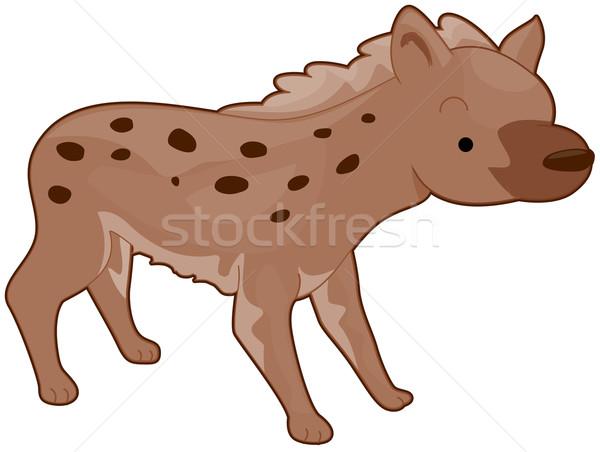 Hyäne Illustration schauen Essen Tier cute Stock foto © lenm