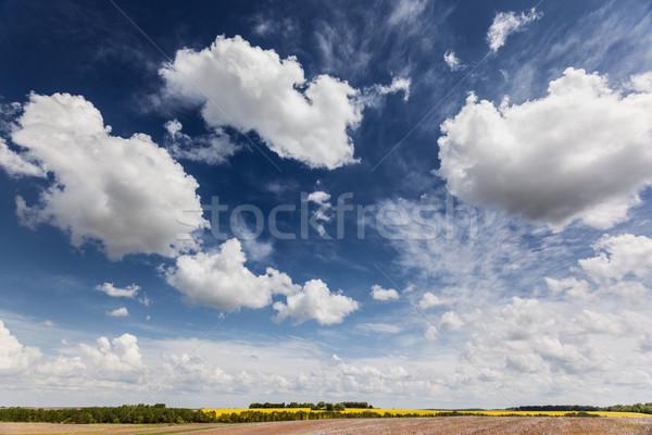égbolt mező fantasztikus kék ég szépség világ Stock fotó © Leonidtit