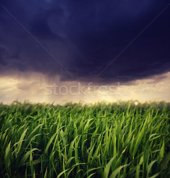 Vihar drámai égbolt sötét baljós felhők Stock fotó © Leonidtit