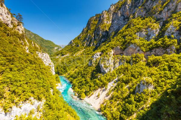 Río Montenegro famoso canón fantástico depósito Foto stock © Leonidtit