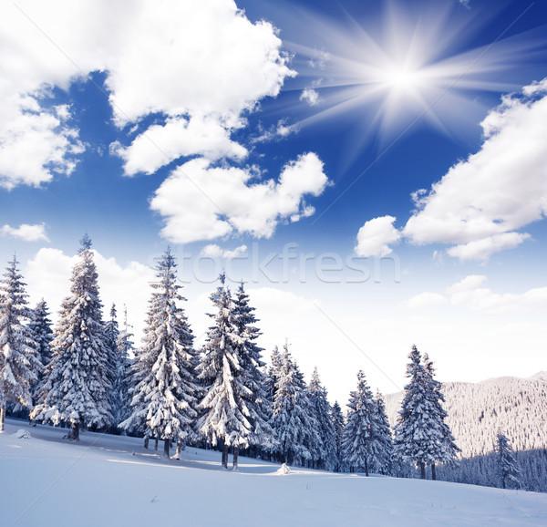 зима морозный небе солнце пейзаж Сток-фото © Leonidtit