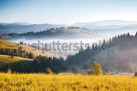 гор пейзаж закат драматический небе Сток-фото © Leonidtit