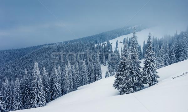 Tél fagyos napos idő hegyek Ukrajna Európa Stock fotó © Leonidtit