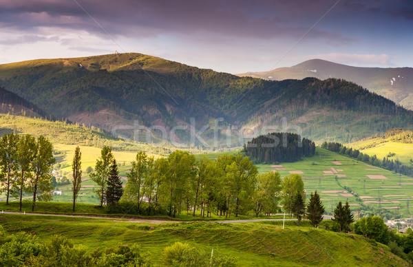 Hegyek tájkép gyönyörű napos idő hegy Ukrajna Stock fotó © Leonidtit