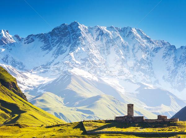 Négy kicsi láb Grúzia Európa Kaukázus Stock fotó © Leonidtit