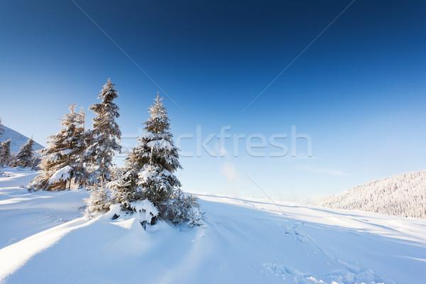 Tél fagyos napos idő égbolt nap tájkép Stock fotó © Leonidtit