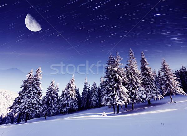 Inverno lattiginoso modo montagna panorama Ucraina Foto d'archivio © Leonidtit