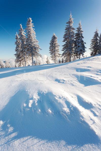 Foto stock: Inverno · fantástico · paisagem · blue · sky · Ucrânia · europa