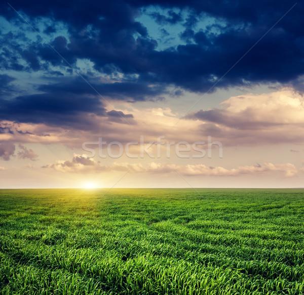 Alan fantastik yeşil dramatik gökyüzü Ukrayna Stok fotoğraf © Leonidtit