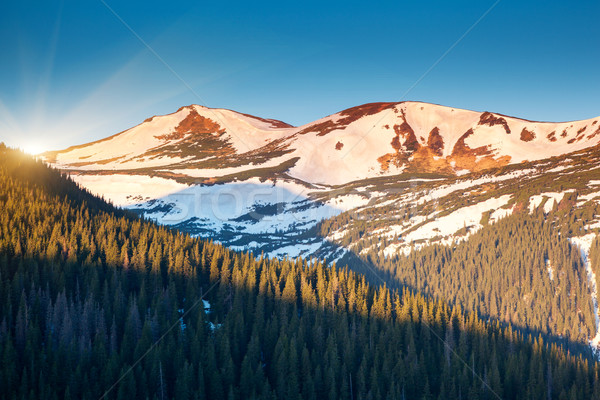 Montanha fantástico paisagem parque Ucrânia Foto stock © Leonidtit