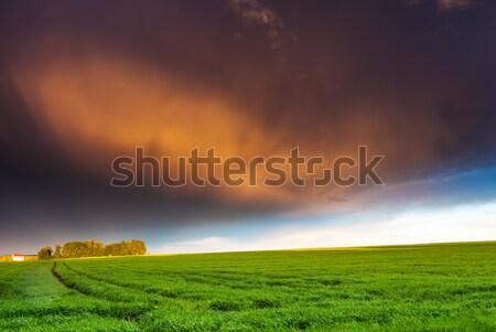 Prairie fantastique domaine coucher du soleil coloré ciel Photo stock © Leonidtit