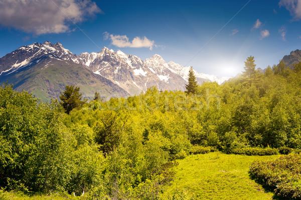 Hegy tájkép gyönyörű kilátás alpesi mezők Stock fotó © Leonidtit