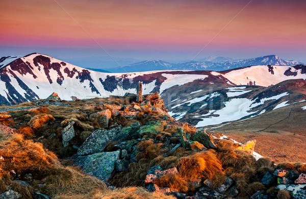 山 日落 山 景觀 木 商業照片 © Leonidtit
