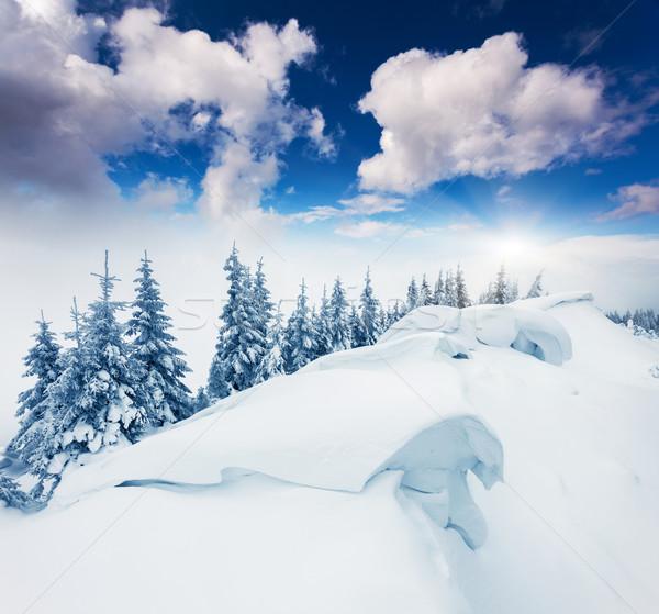 Tél fantasztikus tájkép drámai égbolt Ukrajna Stock fotó © Leonidtit