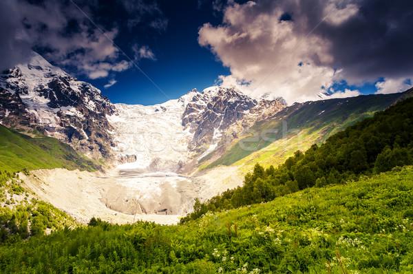Gletsjer mooie alpine voet Stockfoto © Leonidtit