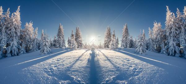 Fantastyczny krajobraz zimą Zdjęcia stock © Leonidtit