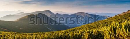 Montagne paysage belle vue rural alpine Photo stock © Leonidtit