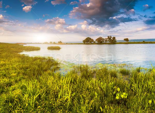 Nehir güzel görmek yaz güney Ukrayna Stok fotoğraf © Leonidtit