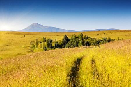Büyü dağ manzara dağlar parıltı sabah Stok fotoğraf © Leonidtit