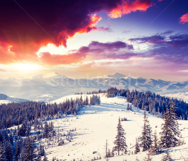 Inverno fantástico manhã montanha paisagem colorido Foto stock © Leonidtit