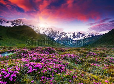 Dağ manzara renkli gökyüzü yaratıcı Stok fotoğraf © Leonidtit