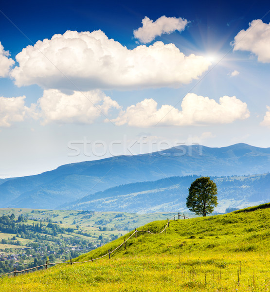 Matin montagne paysage Ukraine Europe Photo stock © Leonidtit