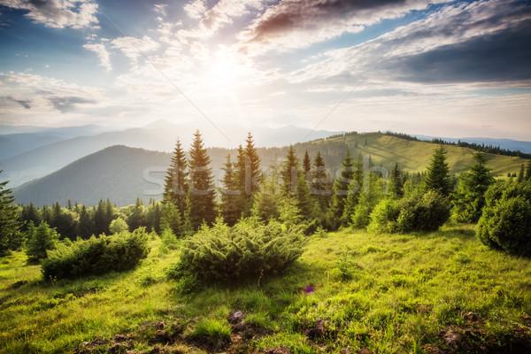 美麗 夏天 景觀 奇妙 天 地方 商業照片 © Leonidtit