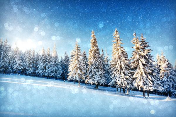Inverno fantástico paisagem natal abstrato bokeh Foto stock © Leonidtit