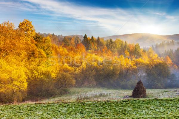 ősz fenséges reggel hegy tájkép színes Stock fotó © Leonidtit