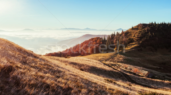Fantastyczny rano scena widoku wzgórza Zdjęcia stock © Leonidtit