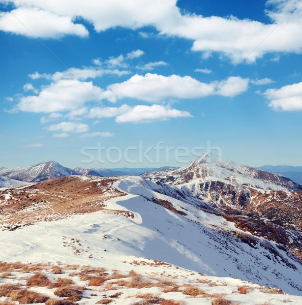Montagne belle paysage herbe forêt Photo stock © Leonidtit