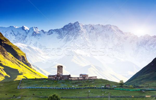 Vier klein voet Georgië Europa kaukasus Stockfoto © Leonidtit
