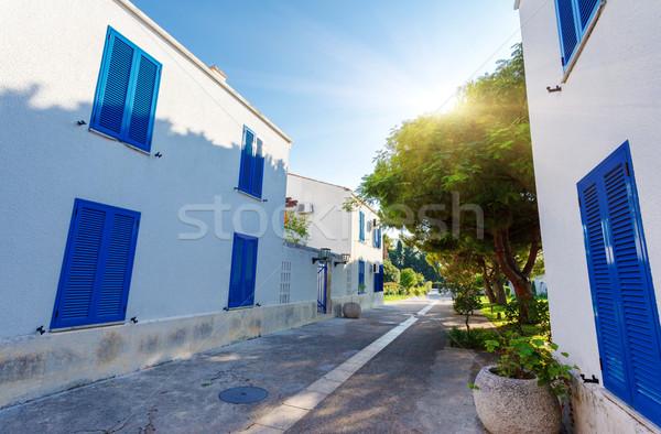 town Stock photo © Leonidtit
