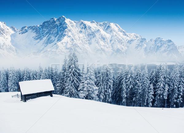 Hegy tájkép fantasztikus tél kék ég kreatív Stock fotó © Leonidtit