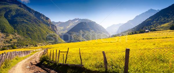 mountain Stock photo © Leonidtit