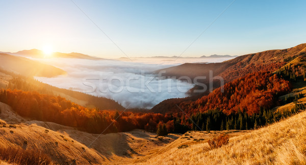 Fantastic morning scene Stock photo © Leonidtit