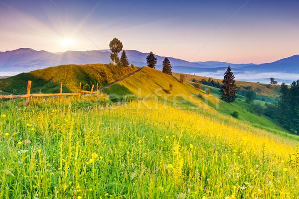 Montagnes paysage majestueux coucher du soleil Ukraine Europe Photo stock © Leonidtit