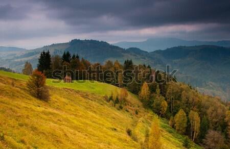 秋天 山 景觀 森林 天空 商業照片 © Leonidtit
