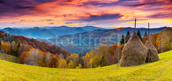 autumn Stock photo © Leonidtit
