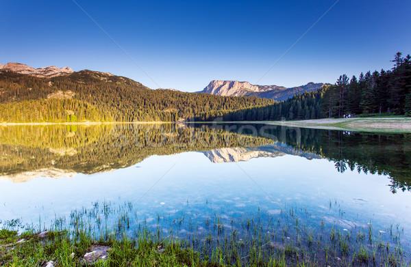 Lac noir parc Monténégro Europe beauté Photo stock © Leonidtit