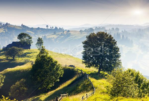 Dağ güzel manzara Ukrayna Avrupa Stok fotoğraf © Leonidtit