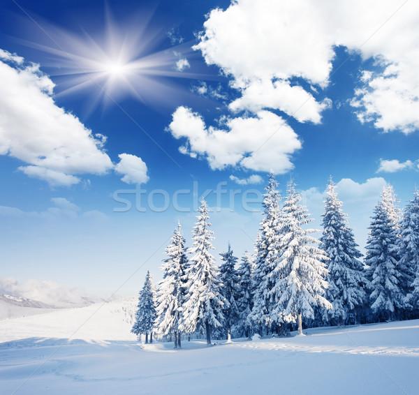 Inverno gelado céu sol paisagem Foto stock © Leonidtit