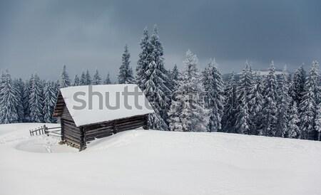 Kış güzel manzara kar kapalı ağaçlar Stok fotoğraf © Leonidtit