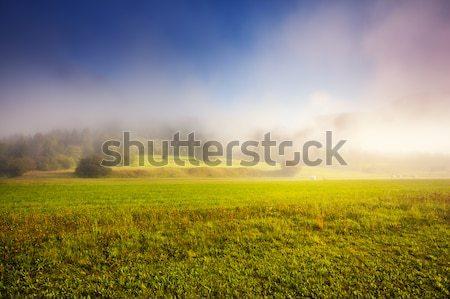 Legelő fantasztikus mező drámai égbolt sötét Stock fotó © Leonidtit